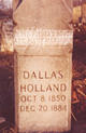 George M Dallas Holland