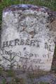 Herbert M. Sloan