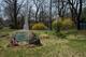 Colfax Family Burying Ground