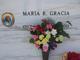 Maria R Gracia