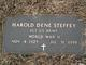 Harold Dene Steffey