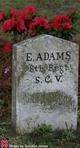 Profile photo: Sgt Elijah Adams
