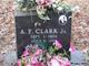 Alonzo F. Clark, Jr
