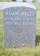 Profile photo:  Adam Bigley