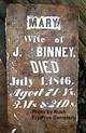 Mary <I>Luellen</I> Binney