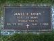 James Edward Riney
