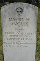 Profile photo:  David H. Anglin