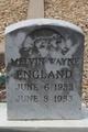 Melvin Wayne England
