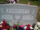 Earl Henry Endicott