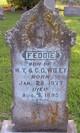 Feddie Wiley
