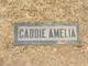 Caddie Amelia <I>Wilbur</I> Richmond