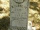 "William ""Early Bill"" Stone"