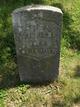 James Henry Harrison Williams