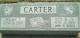 Wilma F Carter