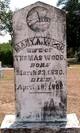 Mary Ann Osborn <I>Dikeman</I> Wood