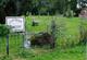 Capp-Tucker Cemetery