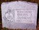 Evelyn J. <I>Warner</I> Olshove