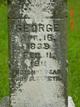 George Shuee
