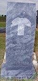 Fannie Taylor <I>Dickinson</I> Abbey