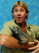 Profile photo:  Steve Irwin