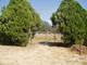 Saint Andrews Cemetery No. 1