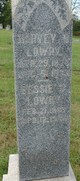 Bessie Virginia Lowry