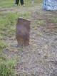 Field stone Steuart