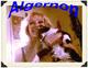 Profile photo:  Algernon Cat