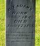 Benjamin Theodore Adams