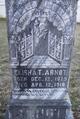 Elisha Truesdale Arnot
