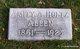 Amity A <I>Holtz</I> Allen