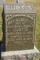 Profile photo: Rev Albert Lee Curtis