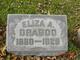 Profile photo:  Eliza Adaline <I>Driscoll</I> Dragoo