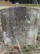 Della Florence <I>Wood</I> Bunch