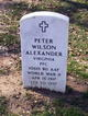 Peter Wilson Alexander