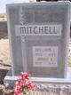 William Lash Mitchell
