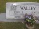 Carl E. Walley