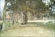 Corey Cemetery
