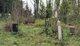 Lynden Jim Cemetery