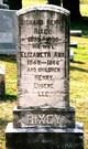 Elizabeth Ann Rixey