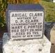 Abigal Clark
