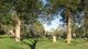 Shain Cemetery