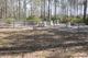 Chauncey Cemetery