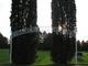 Bristol Lutheran Cemetery