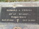 Edward A Cebull