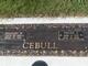 Verna M. <I>Jensen</I> Cebull