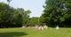 Allen Cemetery #2