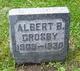 Profile photo:  Albert B. Crosby