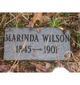"""Marinda Ellen """"Rin"""" <I>Adkins</I> Wilson"""