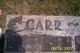 Carl Raymond Carr